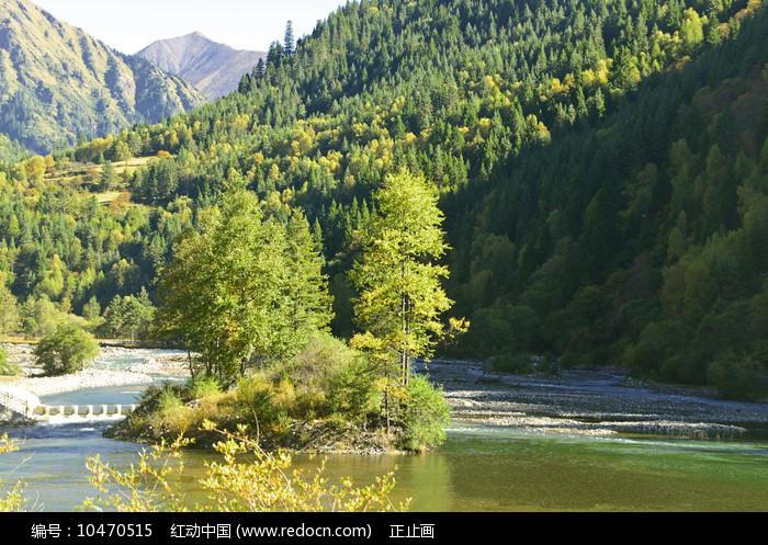 高山下的清澈溪流 图片