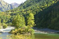 高山下的清澈溪流