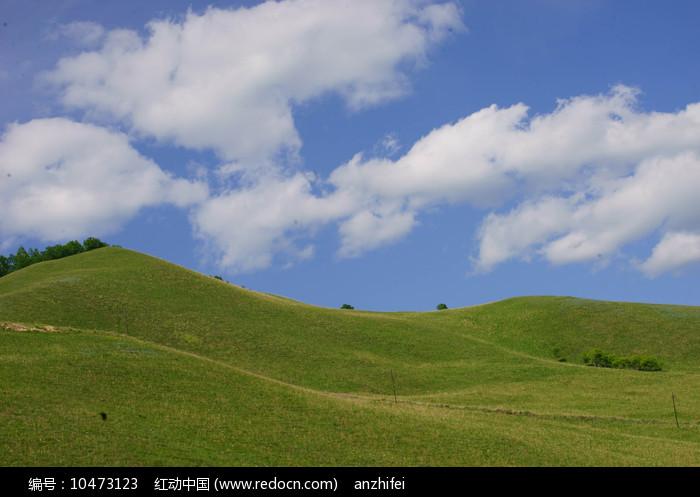 蓝天白云下的绿色草地图片