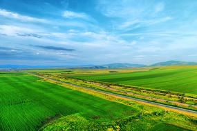 航拍绿色农田和公路