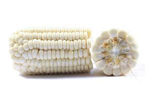 白底上的两个半节白色玉米