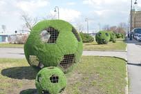 俄罗斯世界杯的绿化特写