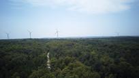 风力发电森林