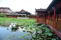 荷塘风景与民族建筑