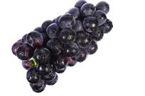 倾斜放置的新鲜黑紫大葡萄