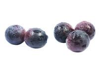 五颗黑紫新鲜葡萄