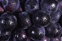 新鲜黑紫大葡萄