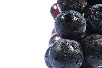新鲜黑紫葡萄