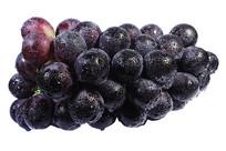 一串美味新鲜紫红大葡萄