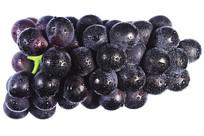一串新鲜黑紫大葡萄