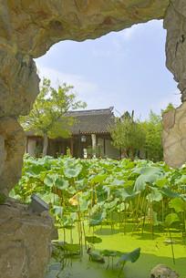 上海市古猗园假山和瘦影碎月轩