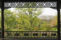 长亭外的包河公园园林景观