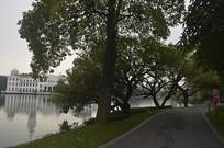 公园绿化景观
