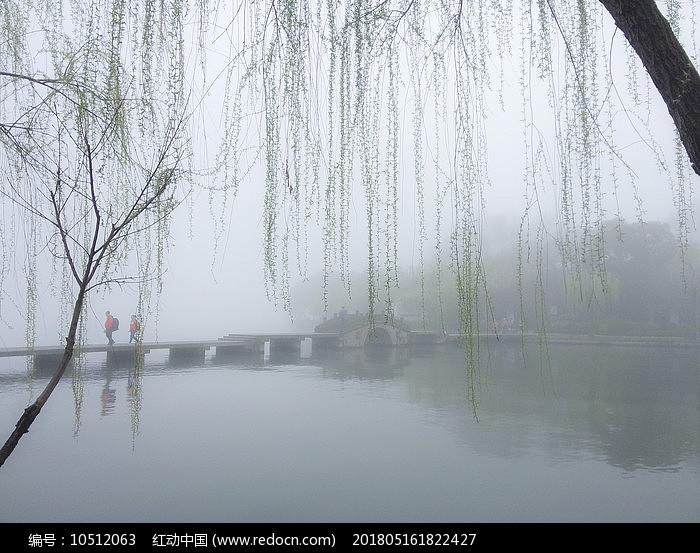 杭州西湖早春杨柳岸小桥湖水图片