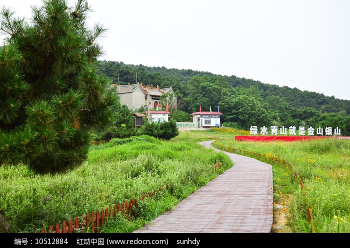 绿色草地间的观景步道图片