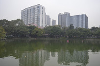 人工湖风景