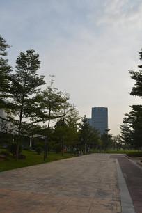 广州儿童公园绿化道