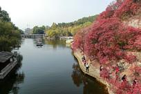 济南红叶谷游人观赏红叶