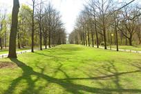 欧洲柏林的大蒂尔加滕公园