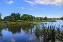 绿水湖面风景