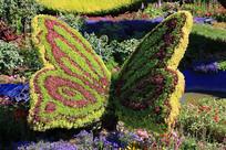 蝴蝶绿植造型