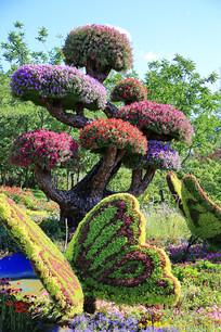 园艺造型五彩树