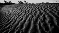 沙漠的纹理