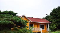 树林中的彩色小房子