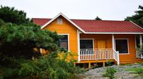 松柏环绕的木房屋