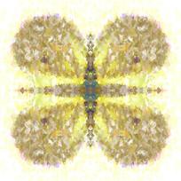 蝴蝶数码花型