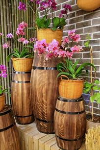 啤酒桶鲜花盆景