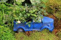 玩具汽车种植园艺