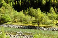 高原河谷清澈的河流