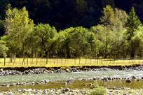 黑水县高原河谷清澈的河流