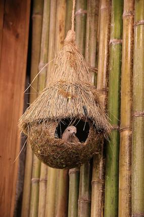 鸟巢鸟窝鸟笼