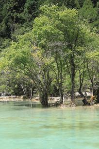 九寨沟自然风景拍摄
