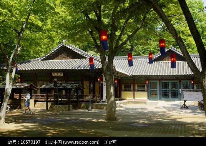 韩国民俗村的灯笼和传统建筑图片