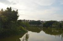 广州儿童公园湖泊
