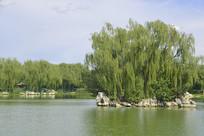 北京龙潭西湖公园湖心岛