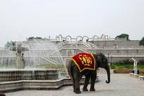 北京市世界公园门口的大象