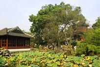 苏州拙政园的浮翠阁和倒影楼