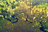 航拍彩林溪流风景