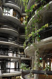 宾馆垂直绿化