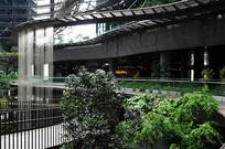 宾馆内部绿化