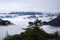 彭州牛坪三口锅的云海