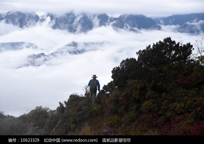 彭州三口锅树林山脊和远山图片