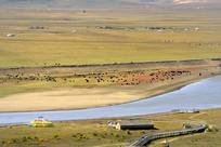 黄河第一湾草甸草原的牧场河流