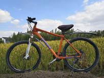 稻田自行车