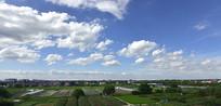蓝天白云与农田