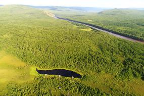 绿色林海湖泊风景